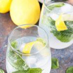 Lemon Basil Gin and Tonic